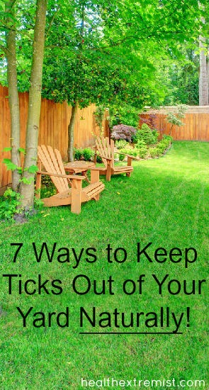 7 Great and Effective Ways to Keep Ticks Out of Your Yard