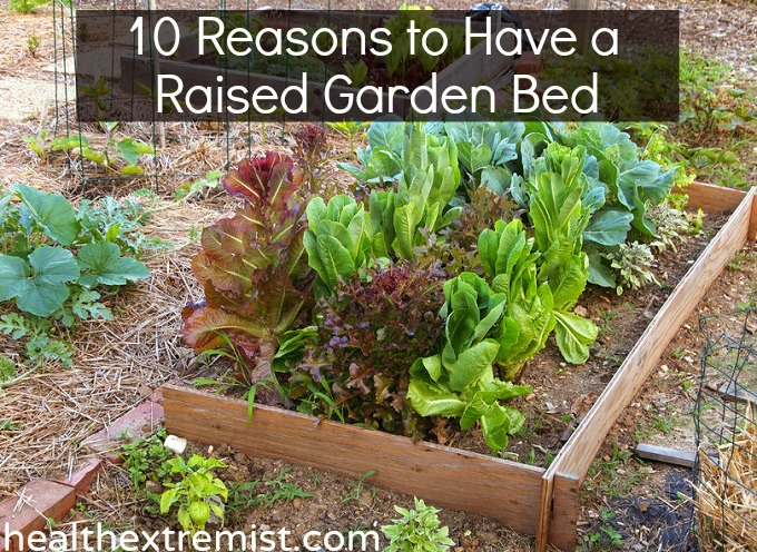 10 Benefits of Raised Garden Beds and How to Make One