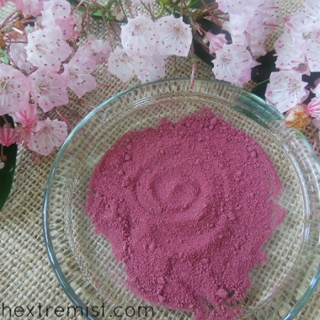 How to Make Blush Naturally with Beets – Easy DIY Beet Blush