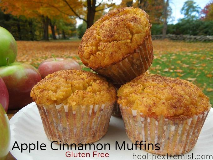 Gluten Free Apple Cinnamon Muffins made with Coconut Flour -gluten free, dairy free, paleo
