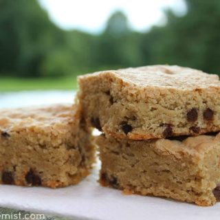 Paleo Blondies Recipe (with Chocolate Chips) - Gluten free, paleo, dairy free